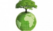 В Иркутске проходит седьмая студенческая экологическая неделя