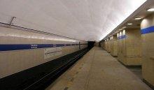 В петербургском метро студент перевозил человеческие органы