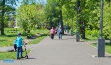 В Иркутске депутаты решают проблему с озеленением города
