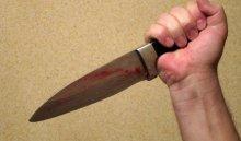 В Аларском районе 7-летняя девочка ударила ножом преступника, убившего ее мать