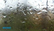 В ближайшие выходные в Иркутской области пройдут дожди и грозы