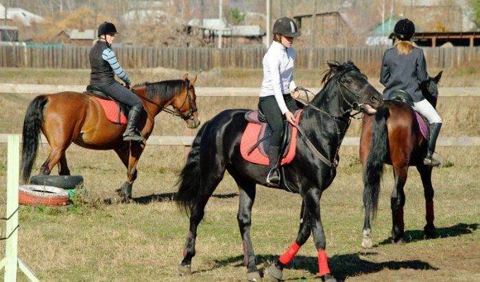 90 лошадей Иркутской области примут участие в конных соревнования