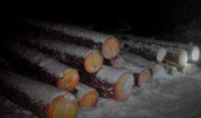 Незаконную рубку леса пресекли впоселке Усть-Уда Иркутской области