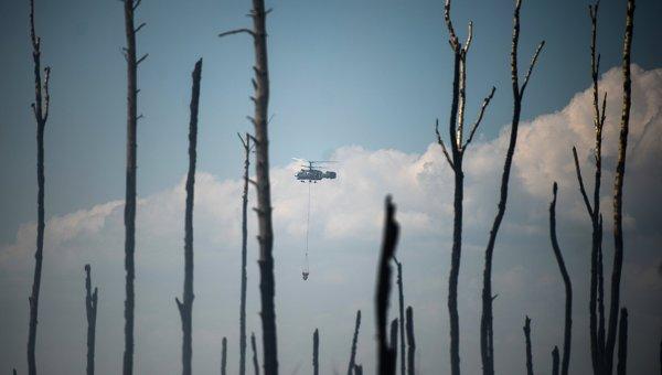 НаДальнем Востоке засутки сгорело почти 1,3тысячи гектаров леса