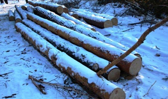 25-летний иркутянин организовал незаконные рубки леса, причинив ущерб на 500 тысяч рублей