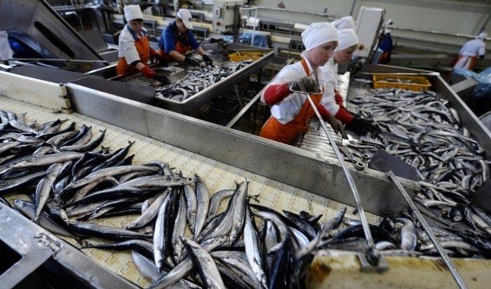 Дело против главы рыбокомбината наШикотане возбудили после «Прямой линии» сПутиным