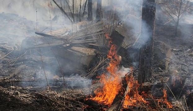 ВИркутской области пьяный мужчина, бросивший вогороде окурок, едва неспалил поселок
