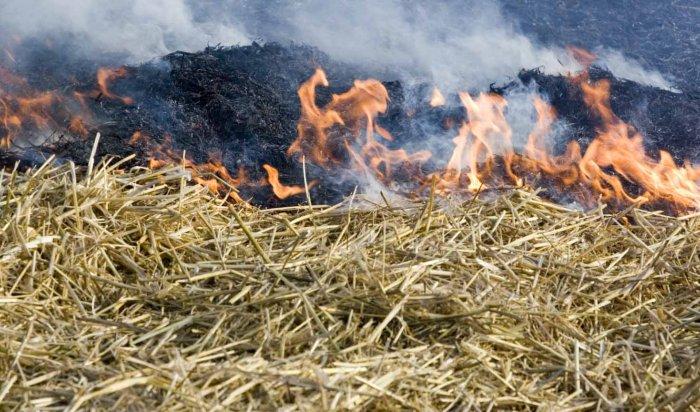 Высший класс пожароопасности зарегистрирован в Жигаловском и Иркутском районах