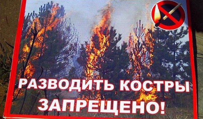 В Приангарье задержали 11нарушителей правил пожарной безопасности влесах