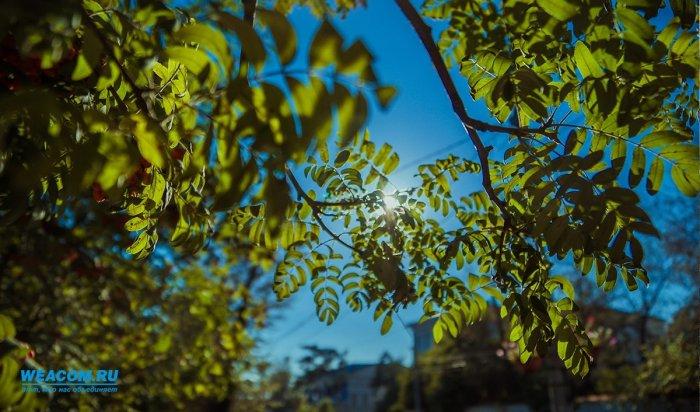 Впервый день лета вИркутской области ожидается до+32º