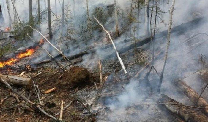 В Иркутской области за сутки задержано 16 человек за нарушение правил пожарной безопасности