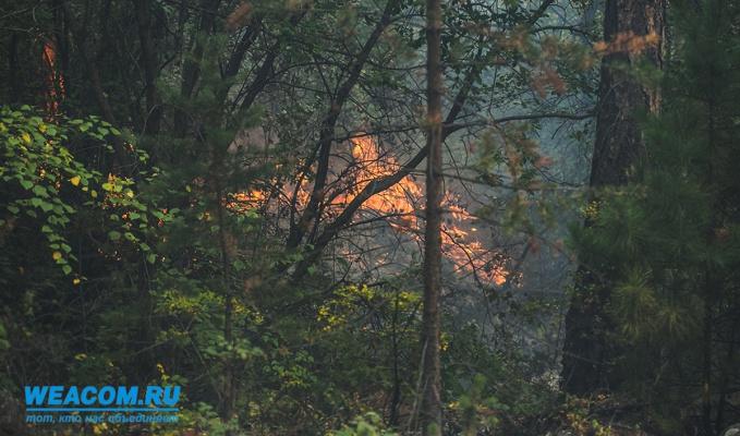 В Качугском районе из-за лесных пожаров введен режим чрезвычайной ситуации