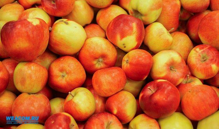 ВИркутске обнаружили почти 600килограммов яблок изПольши