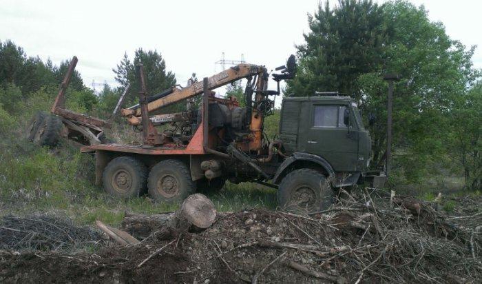 «Черные» лесорубы скрупной партией леса задержаны вШелеховском районе