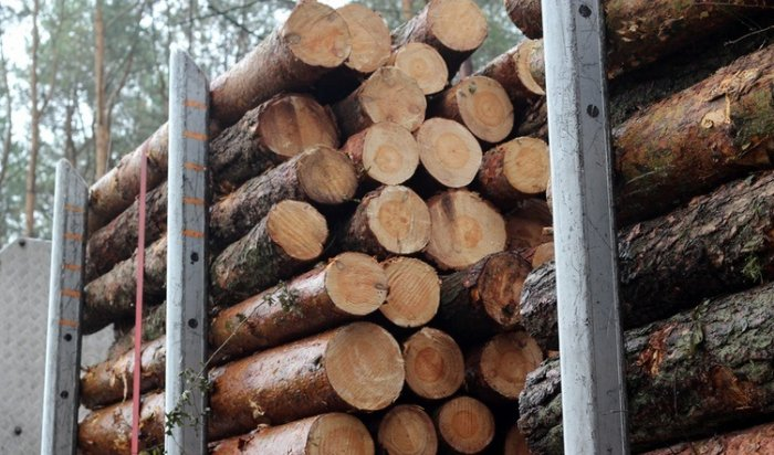 ВЭхирит-Булагастком районе занезаконную перевозку древесины задержан иркутянин