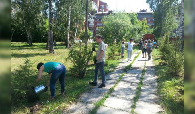 Новая аллея появилась в Правобережном округе Иркутска