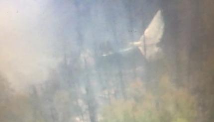 Обнаружены обломки пропавшего Ил-76