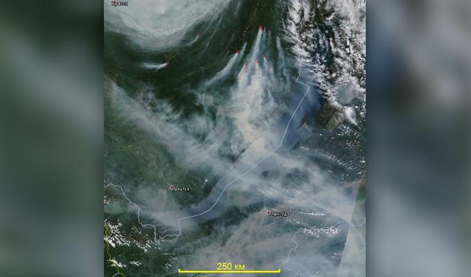 Гринпис обвинил правительство Иркутской области в приуменьшении площади лесных пожаров