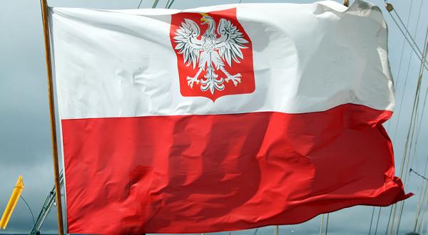 Власти Польши отпустили пилота российского легкомоторного самолета