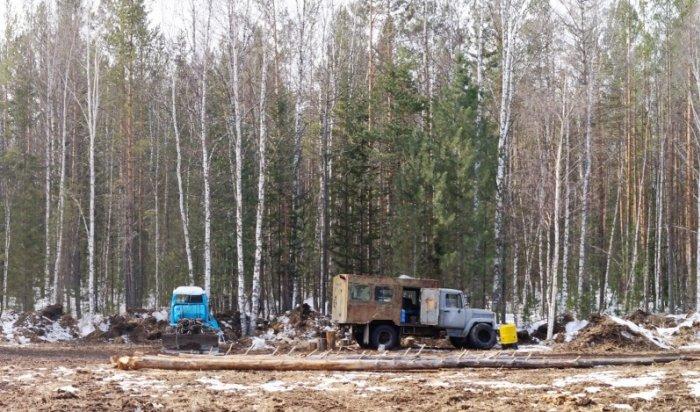 ВПриангарье группа нелегальных рубщиков леса предстанет перед судом