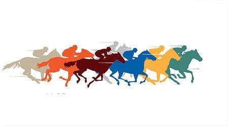 ВИркутске впервые пройдут конноспортивные соревнования наКубок мэра