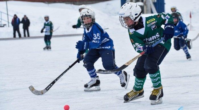 В Иркутской области создадут 8 отделений спортивной школы по хоккею с мячом