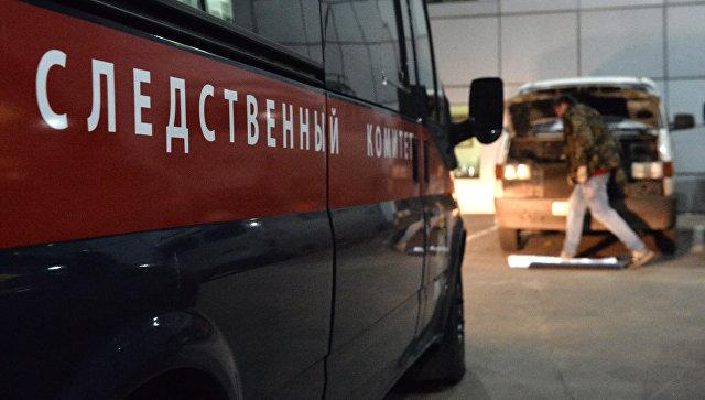 СКзавел уголовное дело напассажира, пристававшего к9-летней девочке всамолете «Новосибирск-Москва»