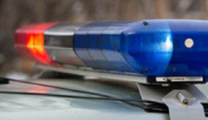 В Иркутском районе полицейские с помощью оружия остановили пьяного водителя