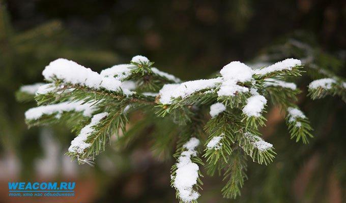 14 сентября в Иркутской области ожидаются заморозки до -5°