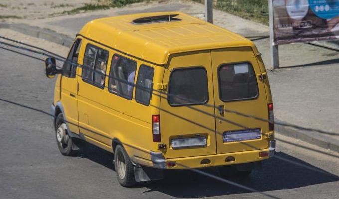 В Магнитогорске водитель маршрутки избил 16-летнюю девочку из-за разговора по телефону