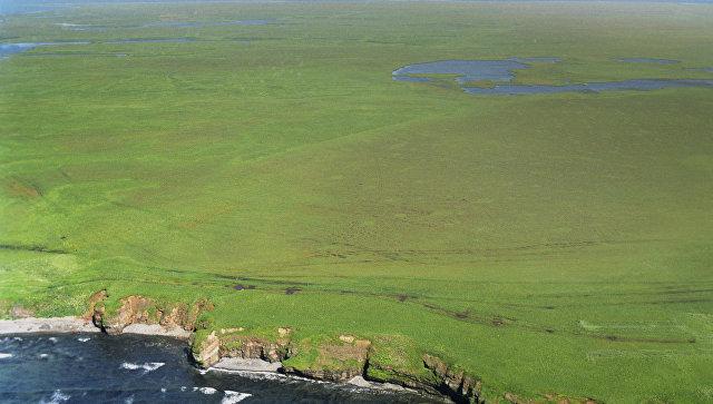 Япония заявила, что готова не претендовать на два Курильских острова России