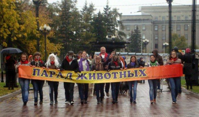 В Иркутске 1 октября пройдет акция в защиту животных