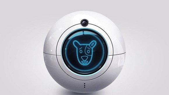 «ВКонтакте» отправит робота Spotty наМКС