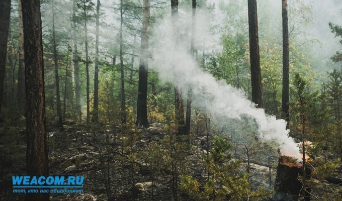 В четырех районах Приангарья сохраняется чрезвычайный класс пожароопасности