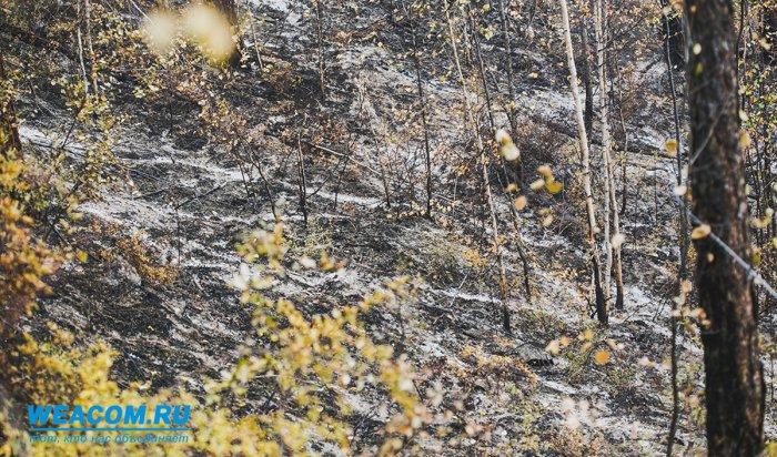 В Иркутской области закрыли пожароопасный сезон