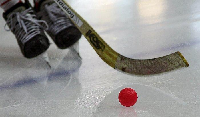 В Иркутской области проходит набор волонтеров на первенство мира по хоккею с мячом