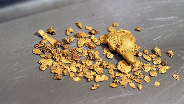 Житель Приамурья получил условный срок занайденную банку сзолотом