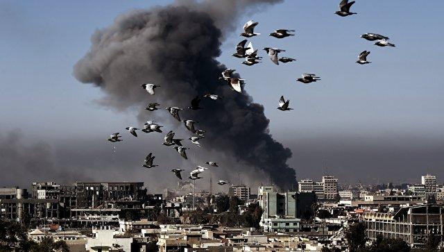 Пентагон взял ответственность за гибель 100 человек при ударе коалиции в Мосуле