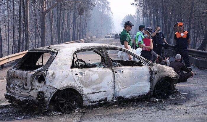 Число жертв лесного пожара вПортугалии возросло до62