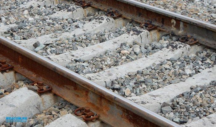 В Братске под пассажирский поезд попала трехлетняя девочка