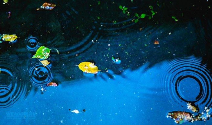 Дожди и грозы ожидаются в Приангарье 5 сентября