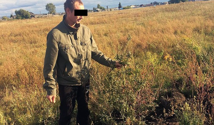 В Зиминском районе задержан велосипедист с наркотиками