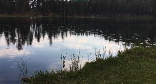 Видео, где озеро Нелли «реагирует» накрик, стало вирусным