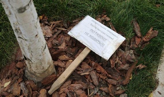 За три дня в парке «Зарядье» посетители уничтожили почти 10 тысяч растений