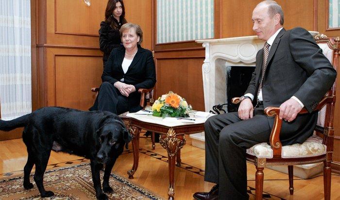 Журнал Focus объяснил оскорбление вадрес Путина «ироничной игрой слов»