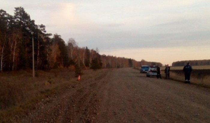 ВКуйтунском районе повине нетрезвого водителя вДТП пострадали две школьницы