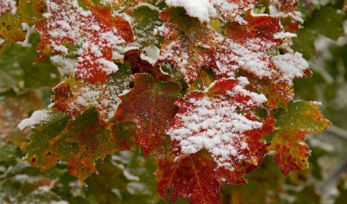В Красноярске ожидается пасмурная погода с дождем и снегом