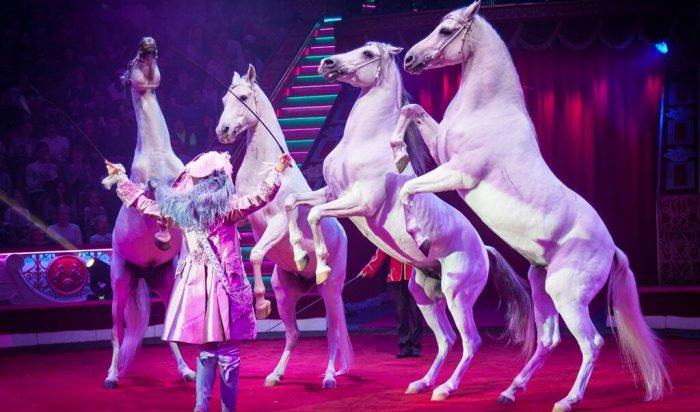 В Иркутске прошло бесплатное цирковое представление для детей из малоимущих семей