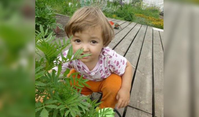 Двухлетней иркутянке Марии Аносовой собирают деньги на лечение от лейкодистрофии