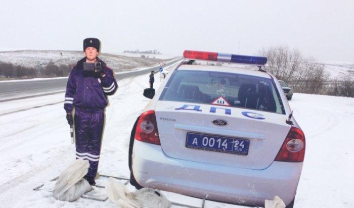 Муляж сотрудника ДПС «Петрович» патрулирует дороги в Боготольском районе